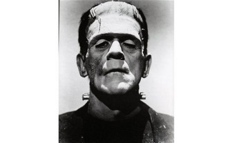 frankenstein, gothic, people, literature