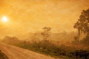 Review: Karl Rahner's Theological Aesthetics